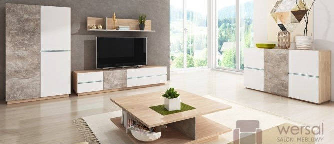 Jakie meble są niezbędne w salonie?